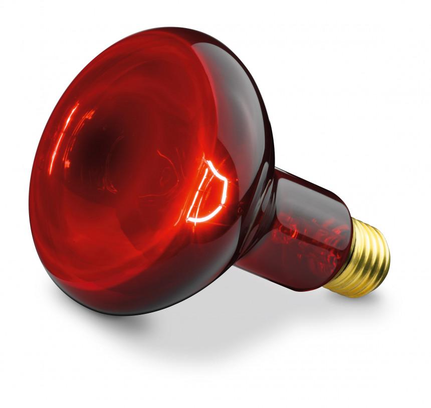 Good Sanitas SIL 06 Infrared Lamp