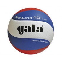 Volleyball Gala Pro-Line 5581S10 dimple