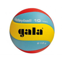 Volleyball Gala Youth Mini Indoor