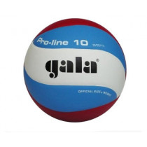 Volleyball Gala Pro-line 5571S10