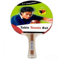 Angel Sports Bat Competition 2 Star